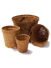 coconut coir pot